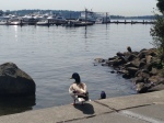 It's a duck's life at Marina State Park