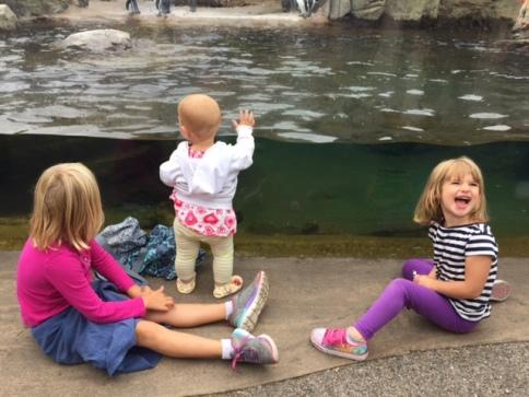 girls-at-zoo